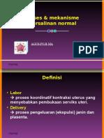 5. Proses & Mekanisme Persalinan Normal_WDD