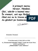 Program vasile militaru.pdf