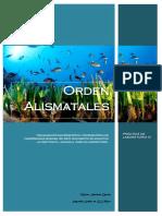 Prácticas de Laboratorio IV - Orden Alismatales [PDF]