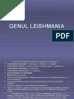 Genul Leishmania