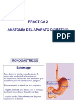 Práctica 2.- Anatomia del aparato digestivo(1)