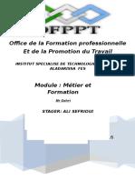 Rapport métier et formation TRI