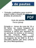 Guía de pautas MODELO.ppt