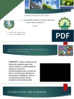 Presentación Riesgo Ambientales Sesión I - V(1).pdf