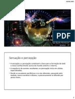 Aula neuroanatomia - atencao e memoria1 (1).pdf