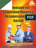 Diplomado en Seguridad Minera y Responsabilidad Social