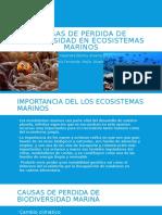 Causas de Perdida de Biodiversidad en Ecosistemas Marinos