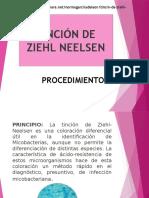 Diapositivas Tincion Ziehl-neelsen