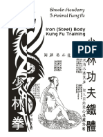 WorkbookShaolinIronBodyKungFuDRAFT.pdf