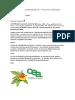 Análisis de Caso Sobre La Importancia de Poseer Valores y Principios en Las Empresas