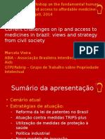 Marcela Vieira International Workshop Fiocruz 2014