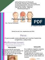 Patologías Del Pene