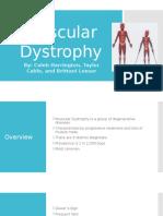 Muscular Dystrophy PP