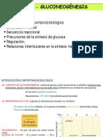 Tema 1.x Gluconeogxnesis (1)