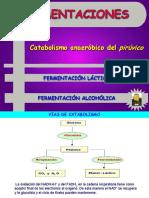 fermentacion lactica.pdf