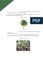 PAG 15-16X