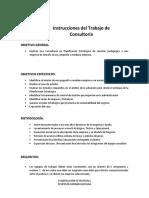 Instrucciones Trabajo Consultoria