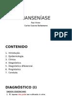 Seminário-Hanseníase