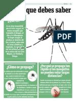 Todo lo que debes saber sobre el virus mayaro