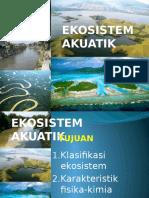 Ekosistem Akuatik Sungai