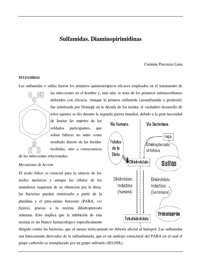 Spanish to English Translation - Lexico Dictionaries
