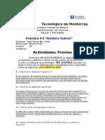 actividades_previasP2