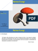 Aula Fungos 3