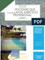 Instituciones Que Regulan El Ejercicio Profesional Del Diseñador de Interiores
