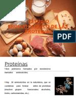 ESTUDIO BROMATOLOGICO DE PROTEINAS.pptx