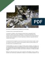 No Existe La Gobernabilidad Ambiental en Colombia
