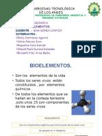 BIOELEMENTOS grupo 3.pptx