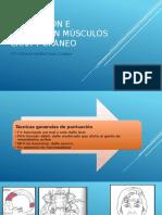valoracion musculos
