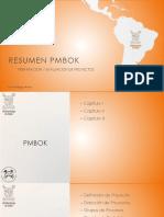 Resumen Pmbok, capitulos i II III
