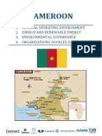Cameroon Country Report