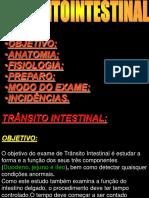 Transito 4