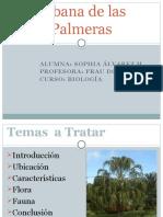 sabanadelaspalmeras-090927154840-phpapp01.pptx
