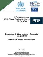 Diagnóstico de Vibrio cholerae y Salmonella spp. por PCR