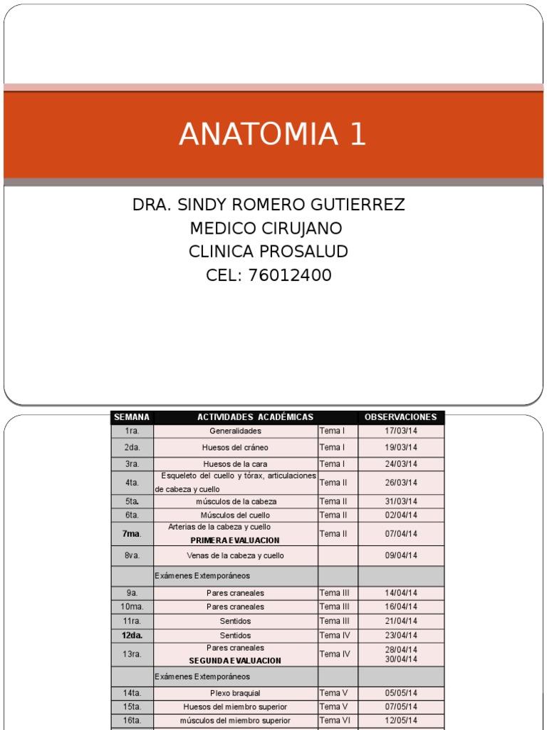 ANATOMIA 1 tema1.pptx
