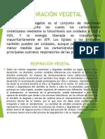 fisiologia diapositivas
