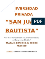 DEBIDO PROCESO fundamentales.docx