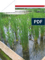 Constructed Wetland Article Municipal - CWRDM.pdf
