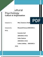 Culture & Organization
