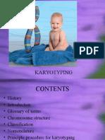 Karyotyping.pptx