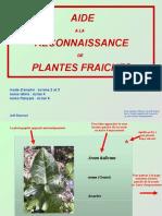 Reconnaissance de Plantes Fraiches