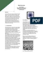 Blob detection Final version (1).pdf