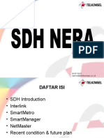 SDH NERA Overview 1