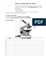 Introduction to the Microscope.docx