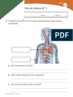 NATURALEZA UNIDAD 3.pdf