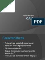Caja Neoris