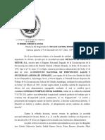 Recurso contencioso administrativo de nulidad Metanol de Oriente.docx